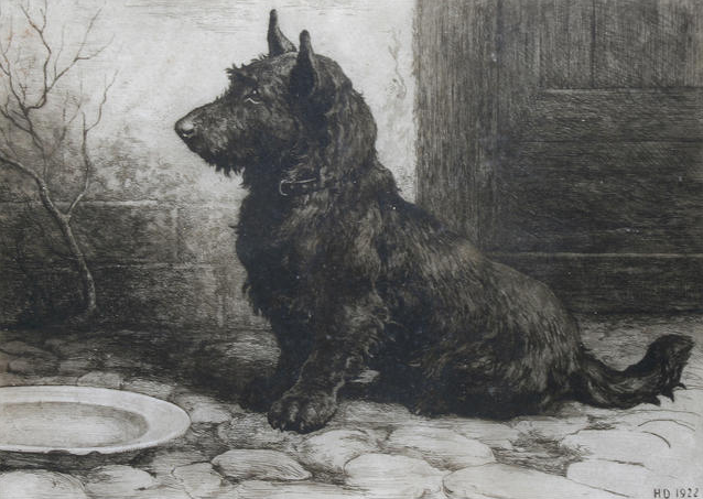 Click to see full size: �Forgotten�  Scottish Terrier etching by Herbert Thomas Dicksee