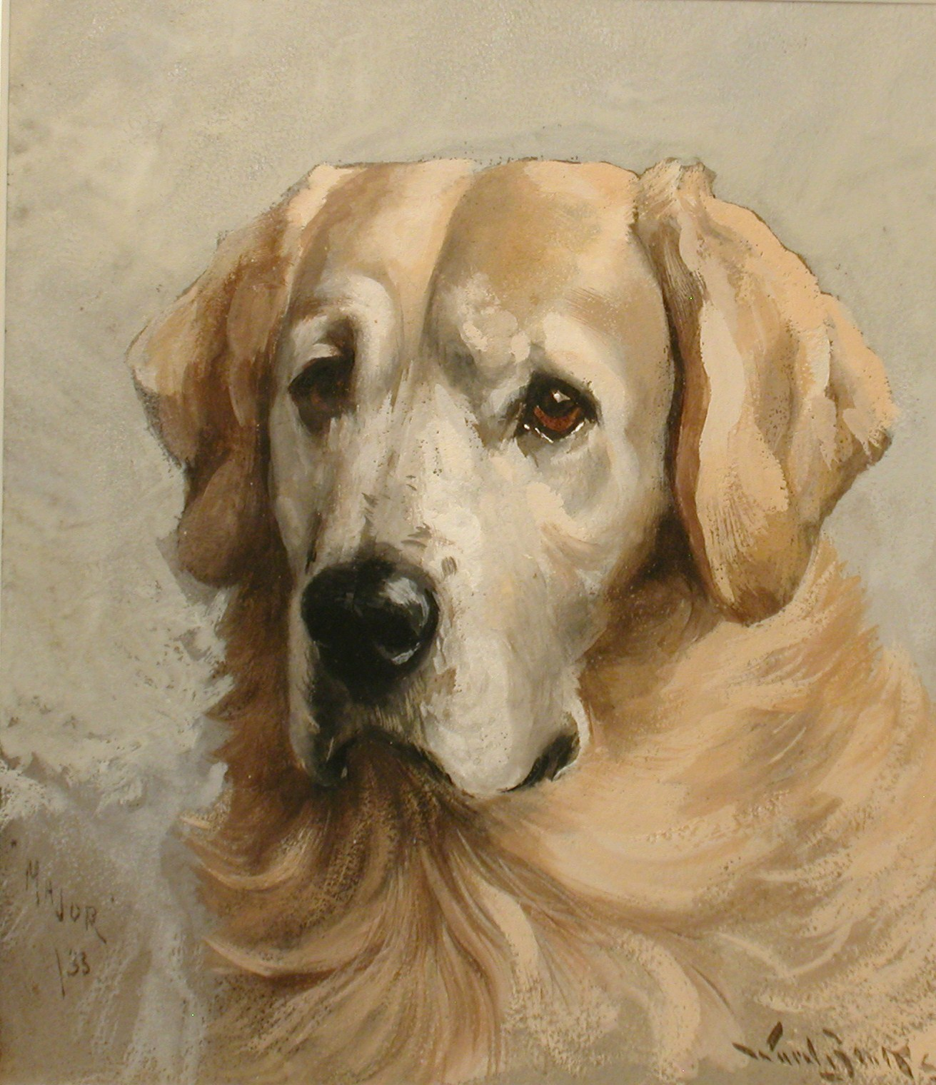 Click to see full size: Watercolour of �Major� a Golden Retriever by Reuben Ward Binks