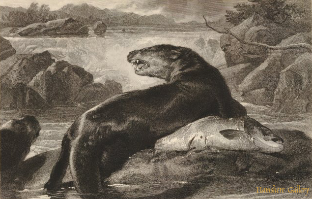 Click to see full size: Otters and Salmon by Charles George Lewis- Otters and Salmon by Charles George Lewis