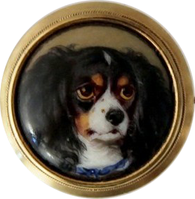 Click to see full size: Kings Charles Cavalier Tricolor Spaniel
