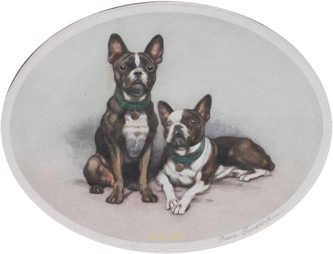 Click to see full size: French Bulldogs by Pierre Pinsard