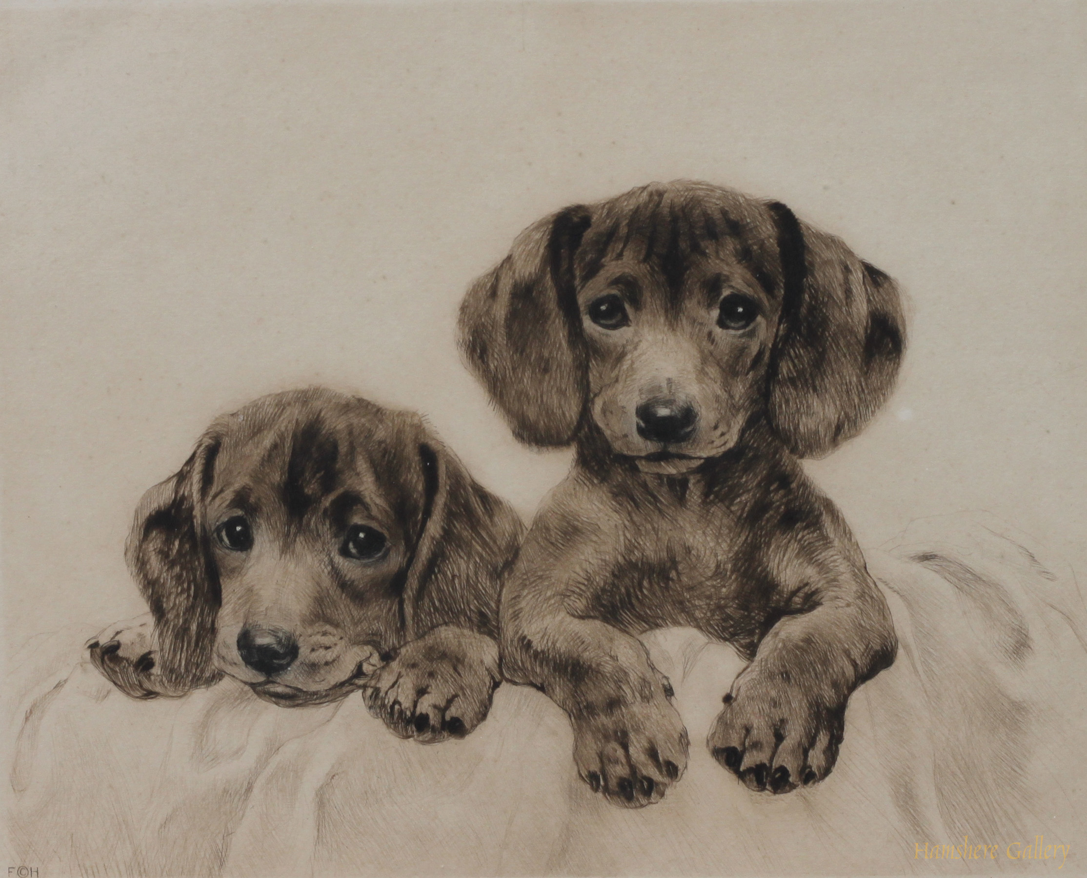 Click to see full size: Dachshund  puppies dry-point etching by Kurt Meyer Eberhardt
