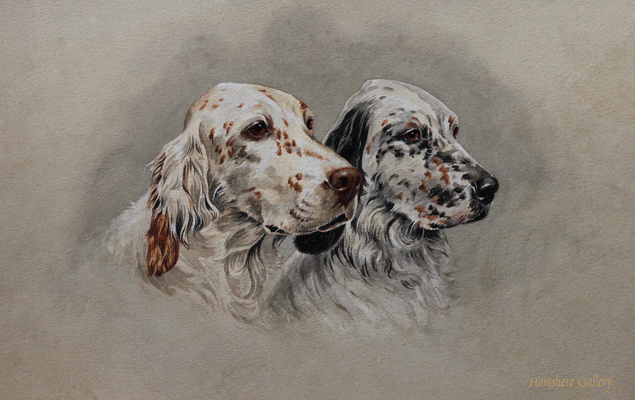 Click to see full size: English Setter watercolour attributable to Samuel Ripley