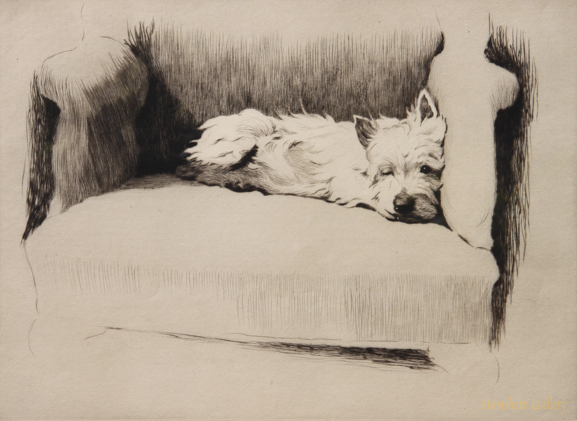 Click to see full size: etching of  West Highland Terrier by  Cecil Charles Windsor Aldin RBA