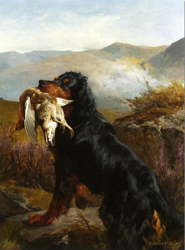 Click to see full size: Gordon Setter by John Sargent Noble