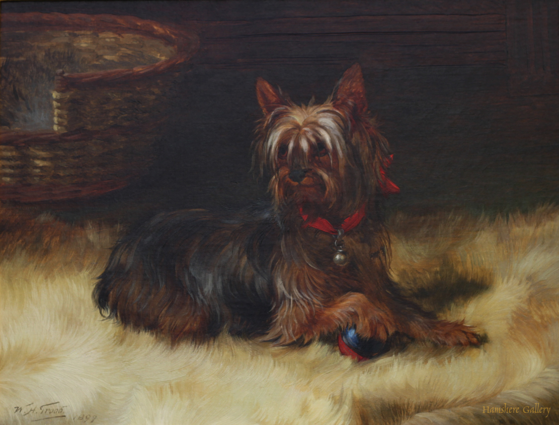 Click to see full size: Oil on canvas of a Yorkshire Terrier by William Henry Hamilton Trood (English, 1848-1899)