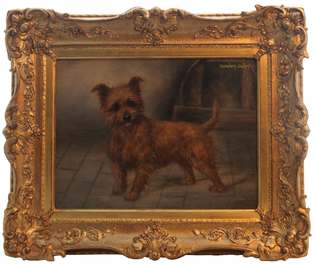 Click for larger image: Norwich Terrier type by Edward Aistrop  - Norwich Terrier type by Edward Aistrop