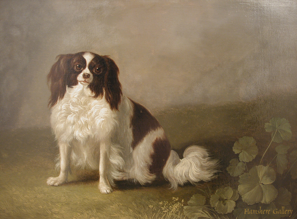 Click to see full size: Oil on canvas of a Phalane King Charles Spaniel by Jacob Philippe Hackert - Oil on canvas of a Phalane King Charles Spaniel by Jacob Philippe Hackert