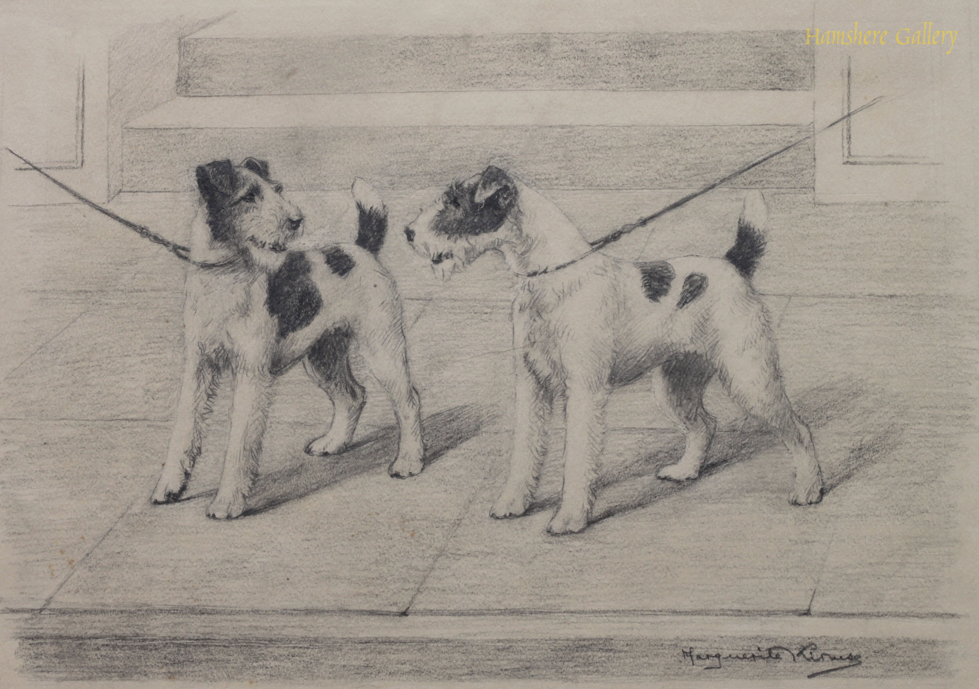 Click to see full size: Fox Terrier pencil drawing And Who Are You by Marguerite Kirmse