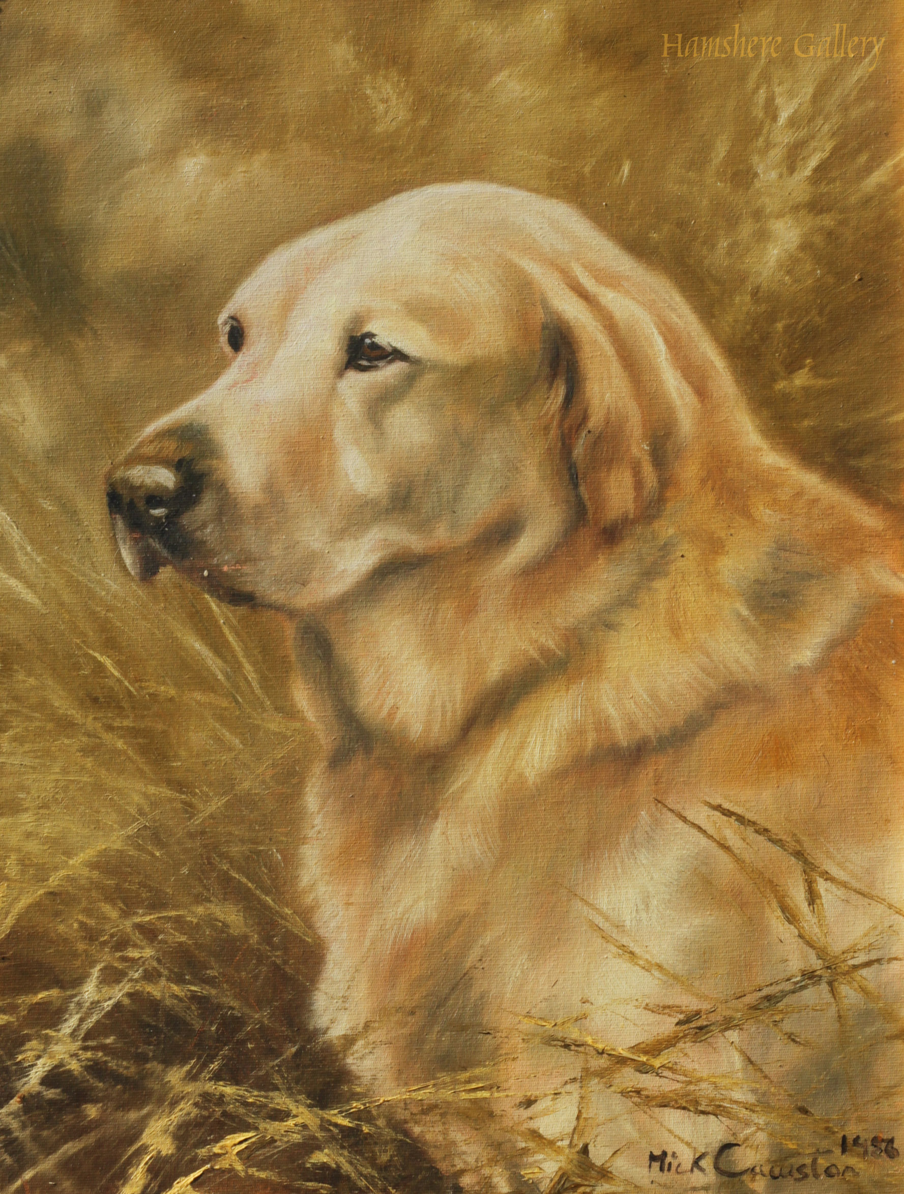 Click to see full size: oil on canvas board of a Labrador Mick Crawston