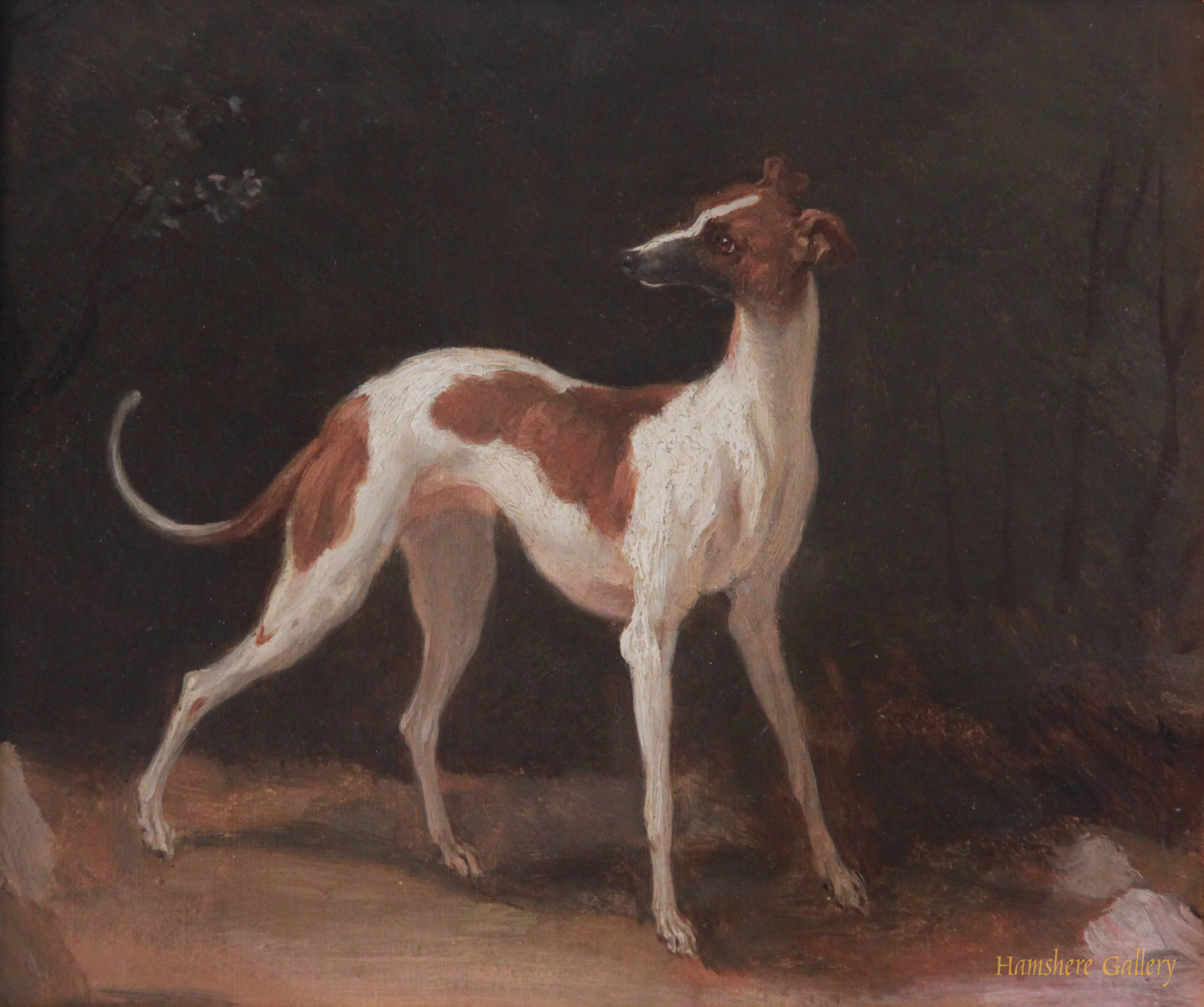 Click to see full size: 19th century French oil sketch of a standing Greyhound