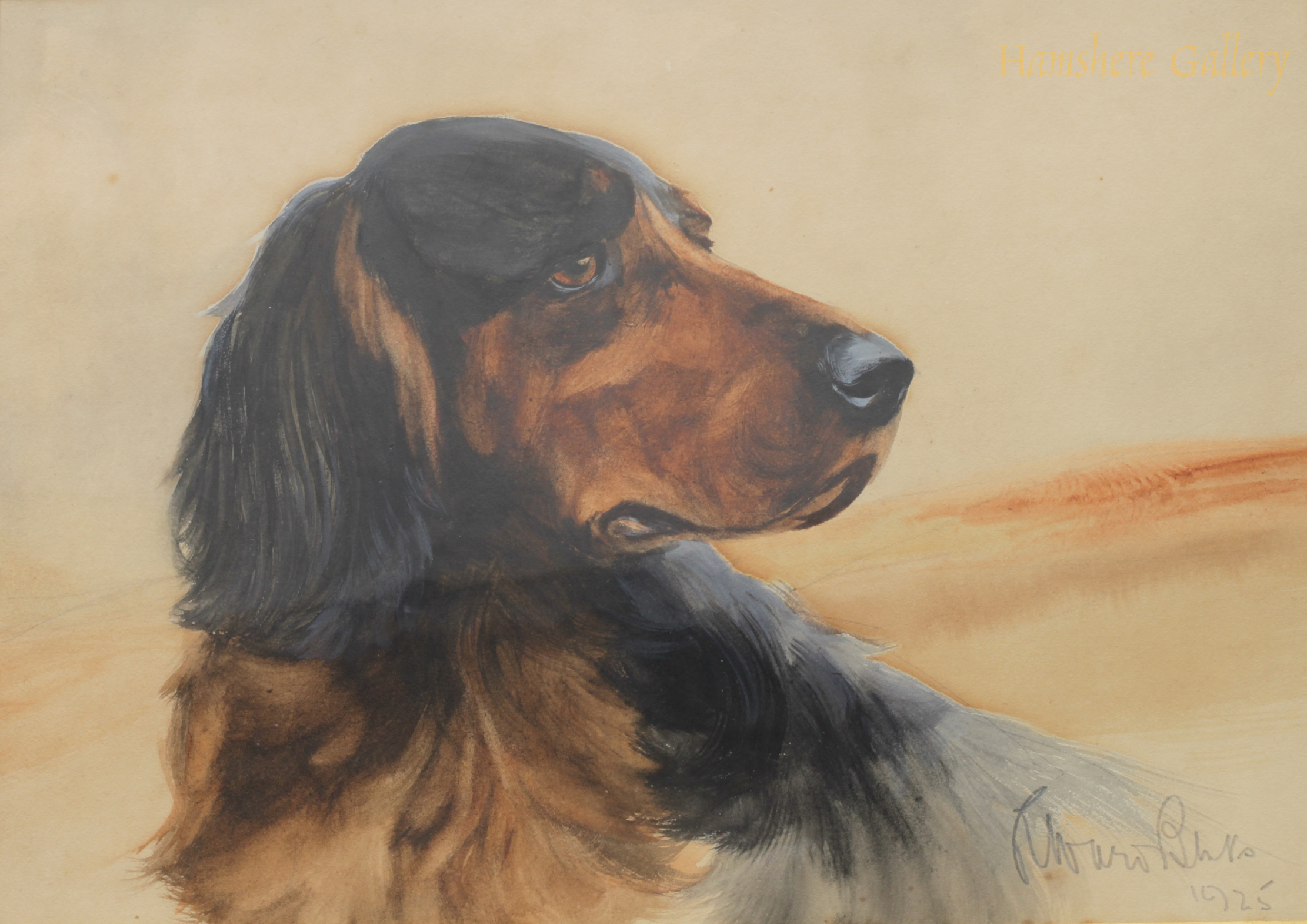 Click to see full size: Watercolour of A Gordon Setter by Reuben Ward Binks