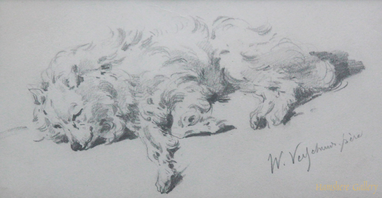 Click to see full size: French mid 19th century graphite drawing of a Spitz by �W. Veych..... p�re�