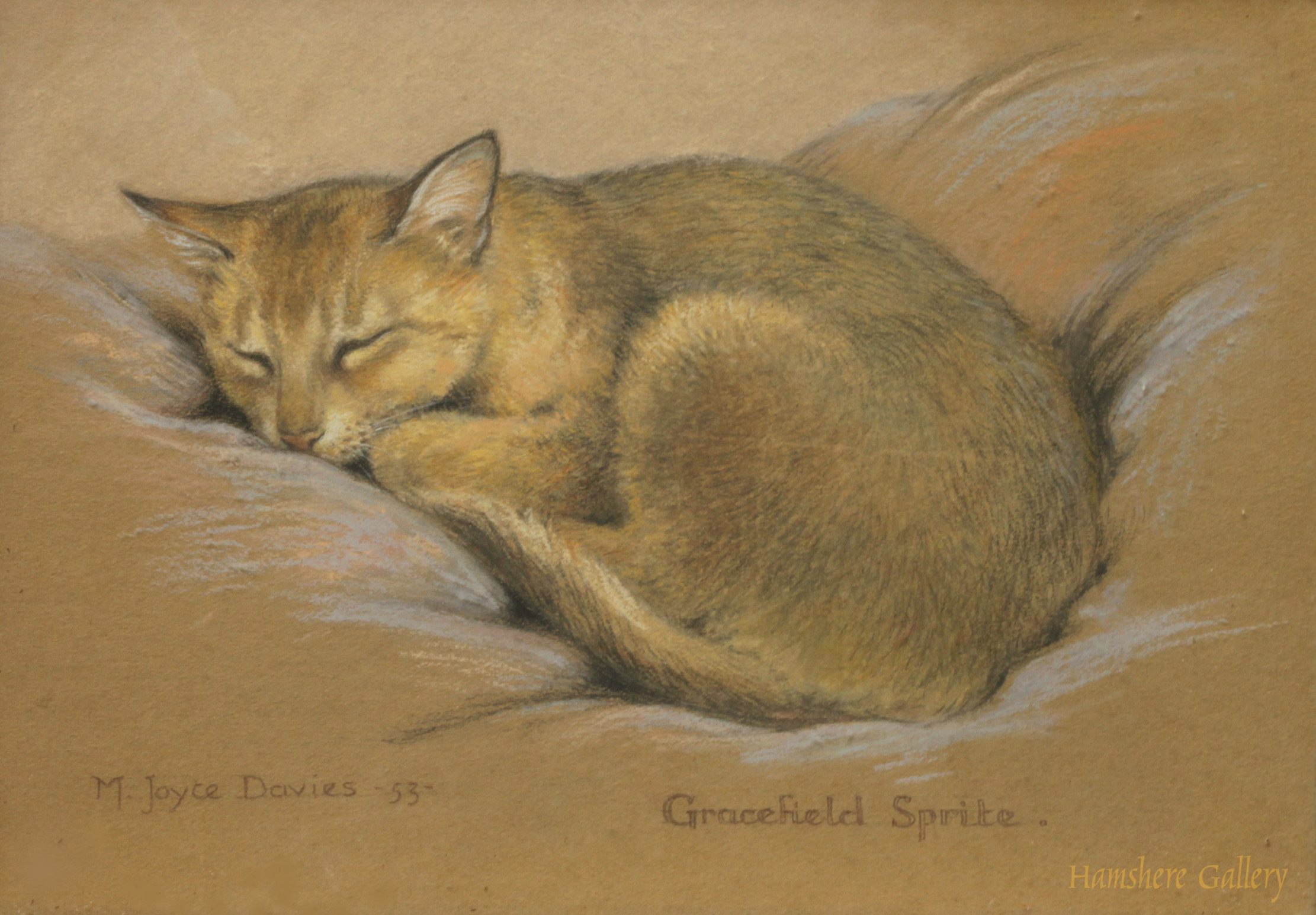 Click to see full size: Cat pastel by M Joyce Davies
