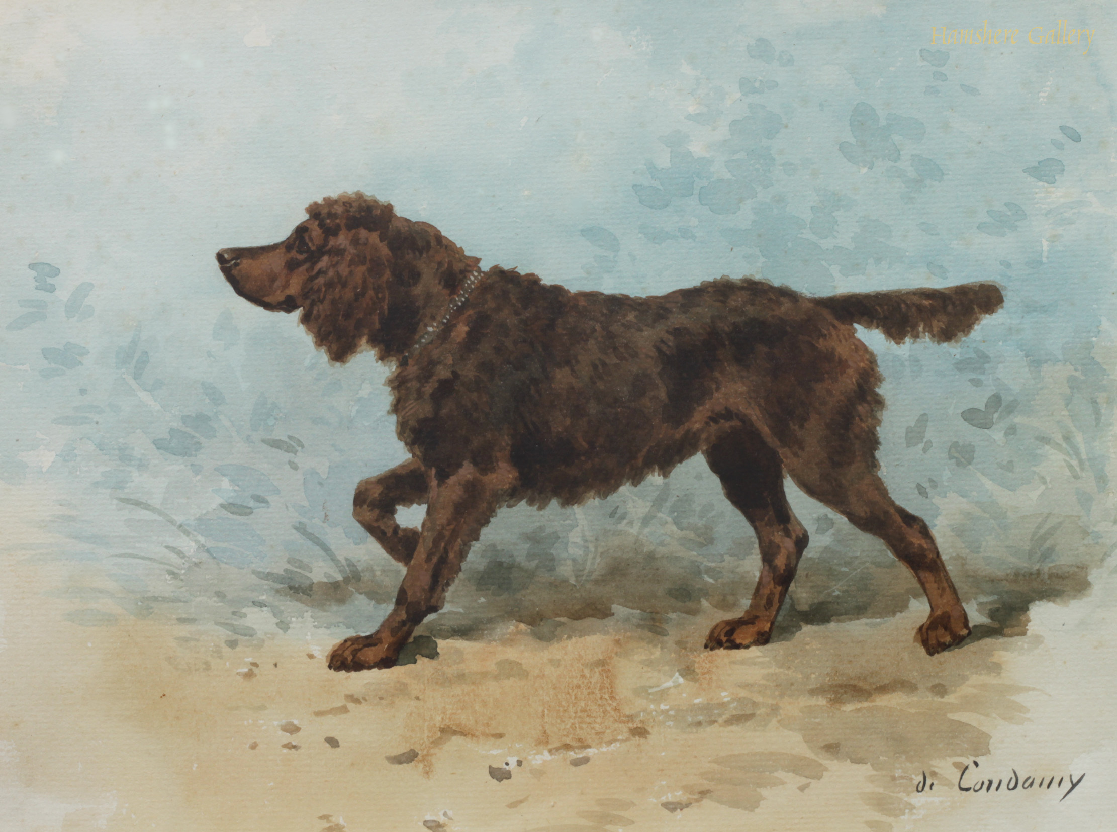 Click to see full size: A watercolour of an Irish Water Spaniel by Charles Cesar Ferdinand de Condamy