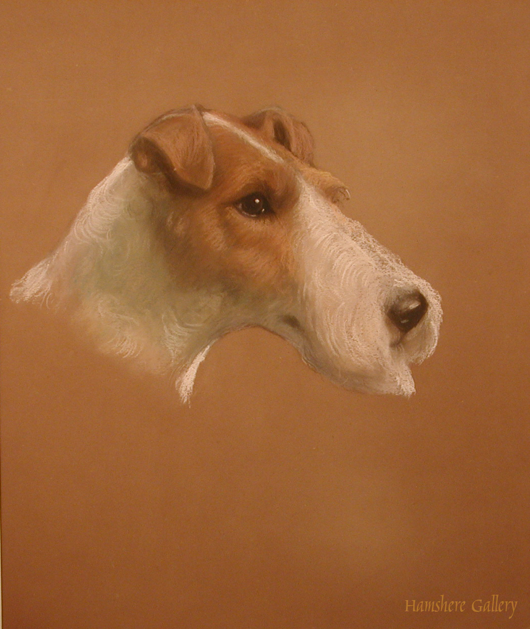 Click to see full size: Wire fox Terrier by Beatrice M White