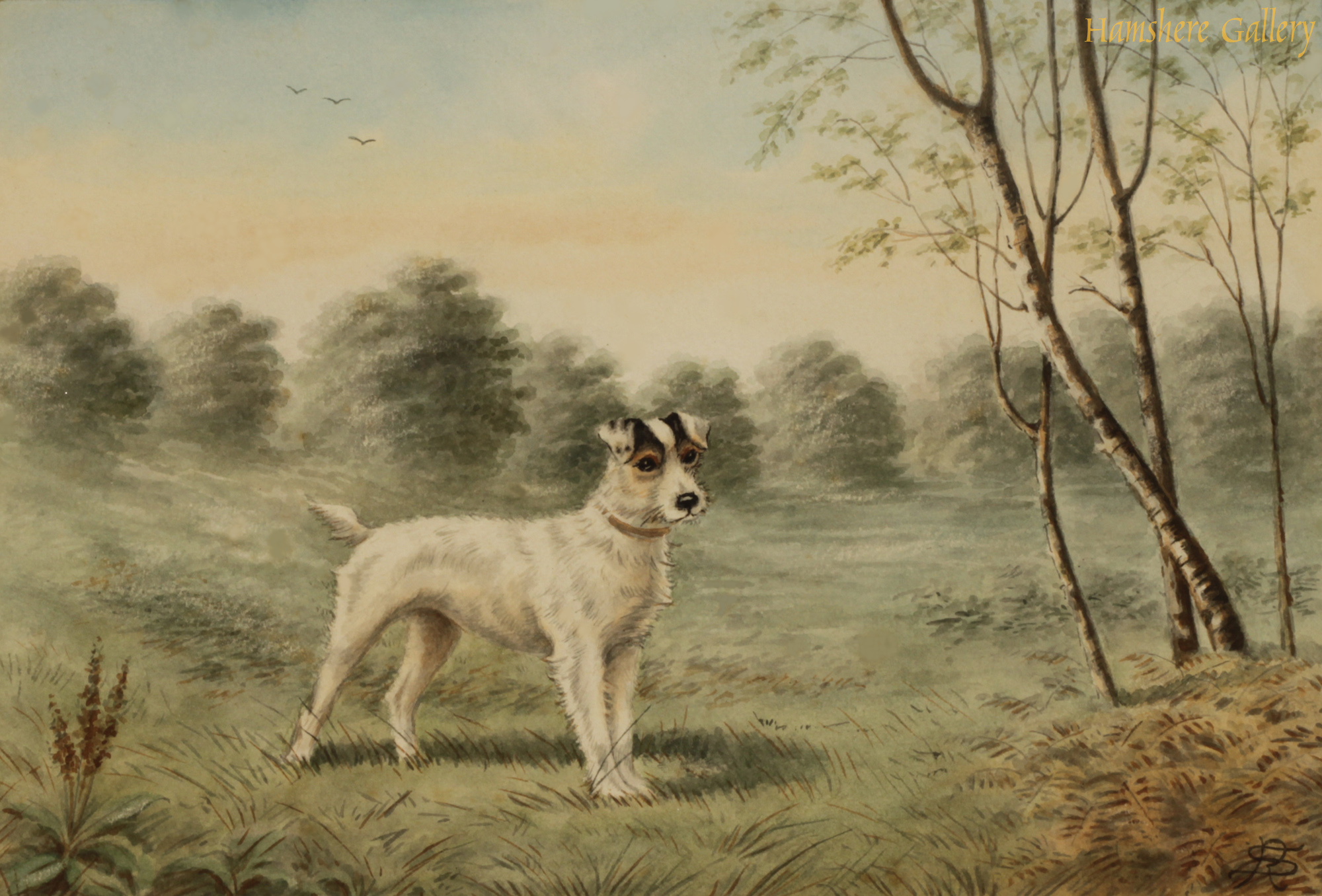 Click to see full size: A watercolour of a Wire-haired Fox Terrier