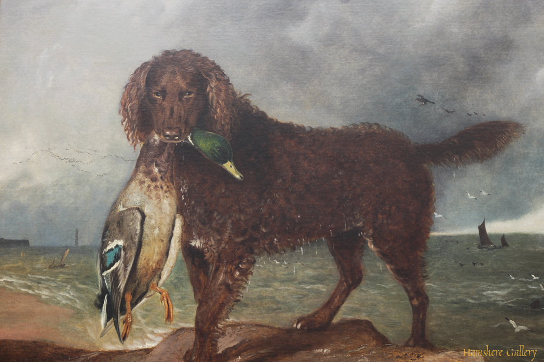 Click for larger image: Irish Water Spaniel oil on canvas by provincial school artist Benjamin Brassett Wadham - Irish Water Spaniel oil on canvas by provincial school artist Benjamin Brassett Wadham