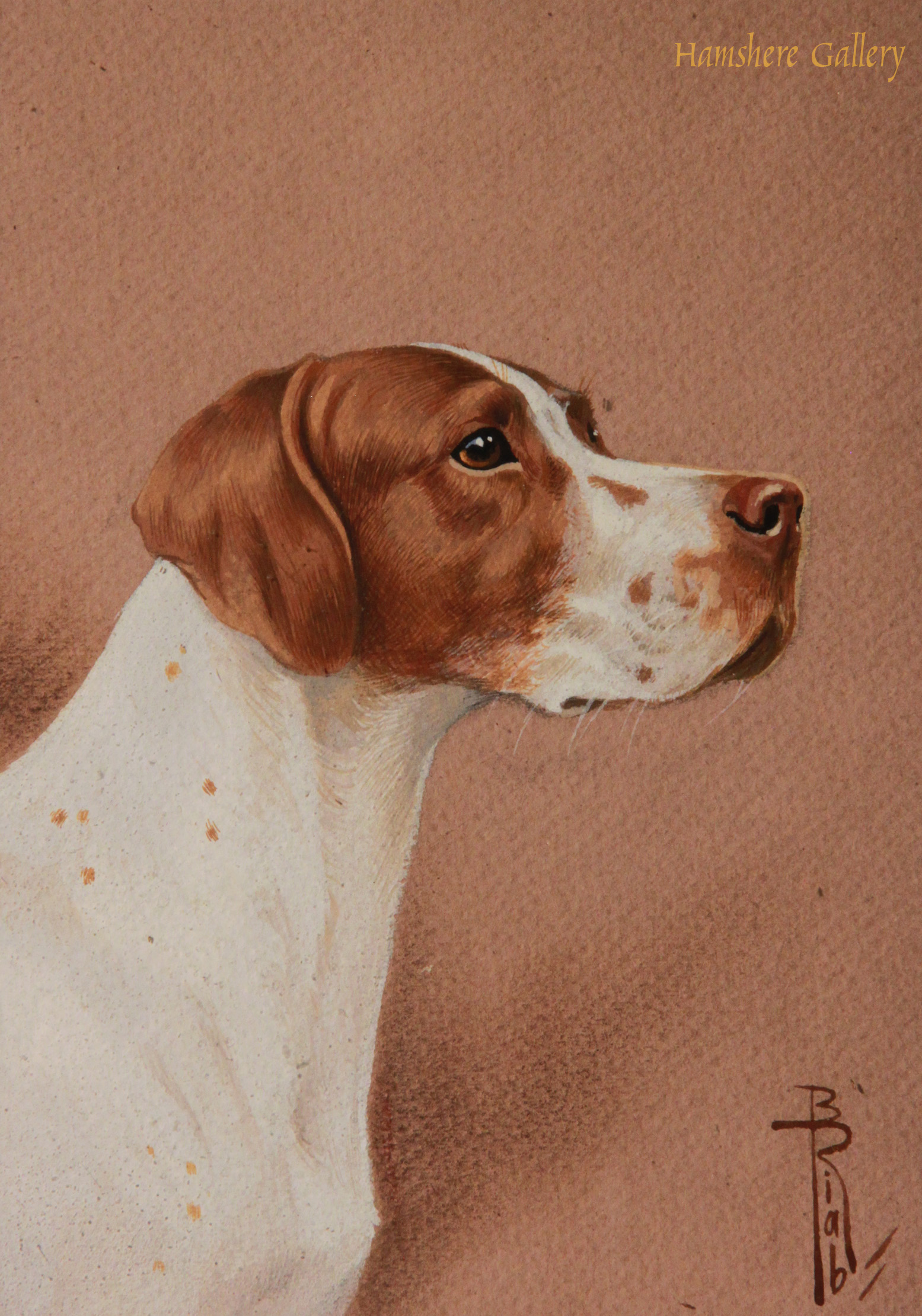 Click to see full size: Miniature in watercolour of an English Pointer by Boris Stefanovitch Riabouchinsky