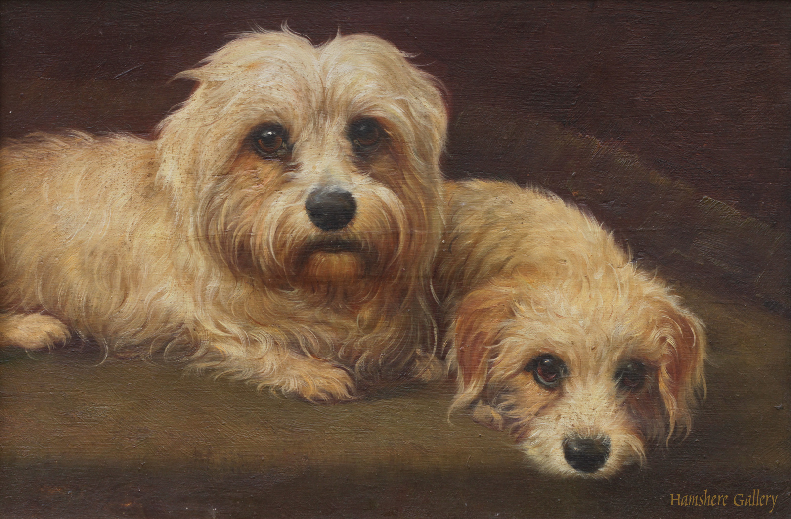 Click to see full size: A 19th century oil on mahogany panel of a pair of recumbent mustard coloured Dandie Dimont terriers.