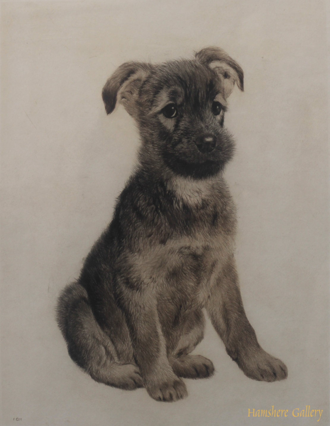 Click to see full size: German Shepherd puppy aquatint dry-point etching by Kurt Meyer Eberhardt