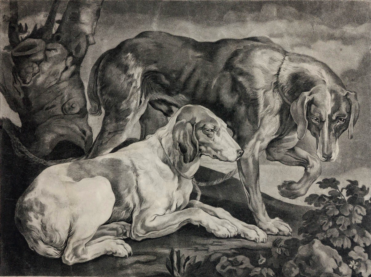 Click to see full size: Hunting dogs engraving by George Townley Stubbs (English, 1756-1815) after Titian (Tiziano Vecelli or Tiziano Vecellio)