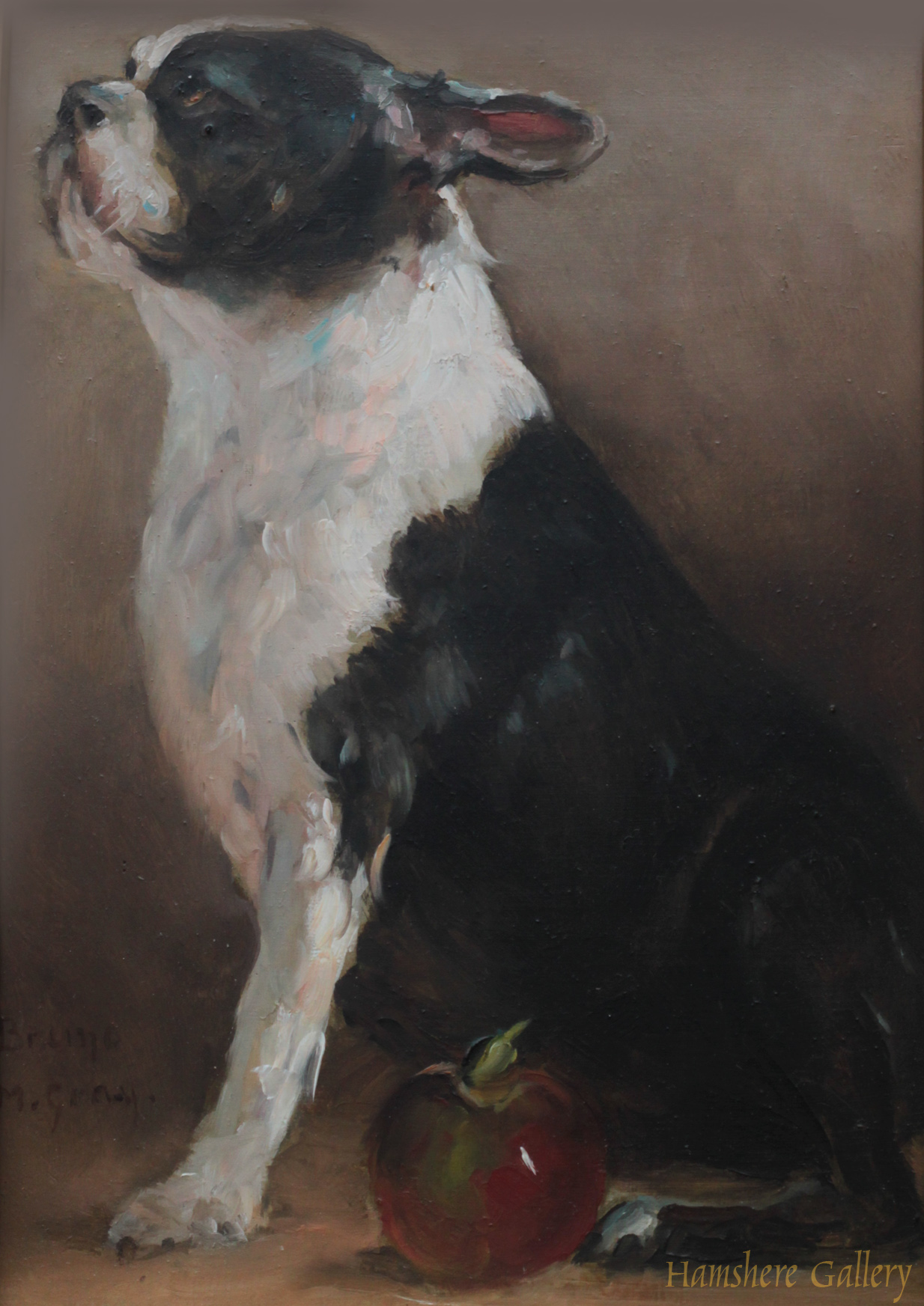 Click to see full size: French Bulldog �Bruno� oil on panel by Monica Gray