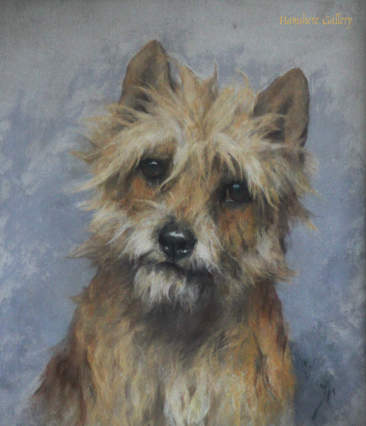 Click to see full size: Cairn Terrier by Arthur Wardle RI, RBC