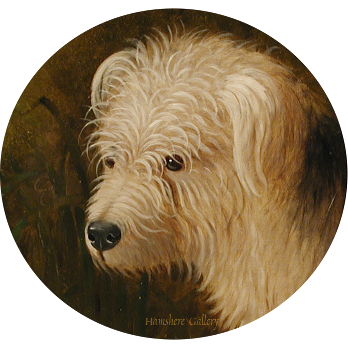Click to see full size: 19th English Provincial School oil of a Dandy Dinmont type terrier