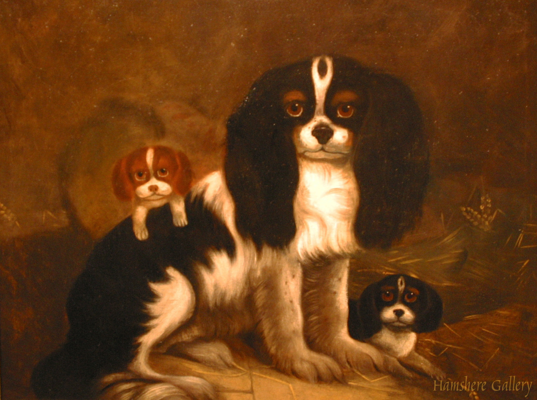 Click to see full size: A English provincial school oil of King Charles Cavalier Spaniel and puppies.   SOLD