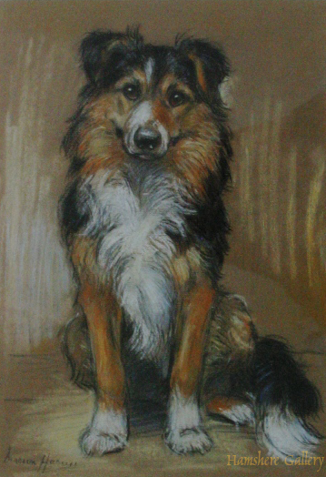 Click to see full size: Collie pastel by Marion Rodger Hamilton Harvey