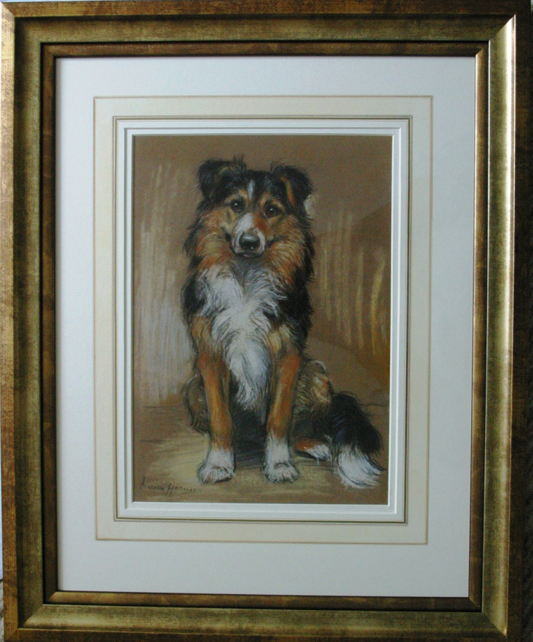 Click to see full size: Collie pastel by Marion Rodger Hamilton Harvey- Collie pastel by Marion Rodger Hamilton Harvey