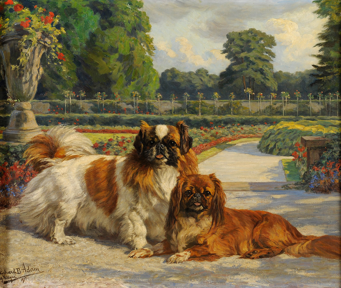 Click to see full size: Oil on canvas of Pekingese and Tibetan by Richard Benno Adam (German, 1873 � 1973)