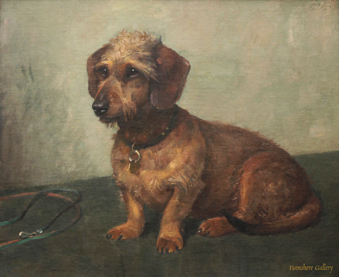 Click to see full size: A mid 20th century oil on canvas of a Wire-haired Dachshund