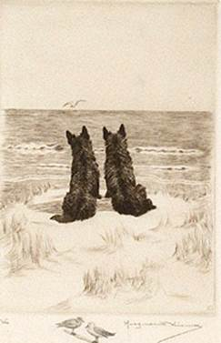 Click to see full size: Scottish Terrier dry-point etching �We� by Marguerite Kirmse