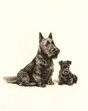Click to see full size: Scottish Terrier dry-point etching �Me and Ma� by Marguerite Kirmse (English, 1885 -1954)
