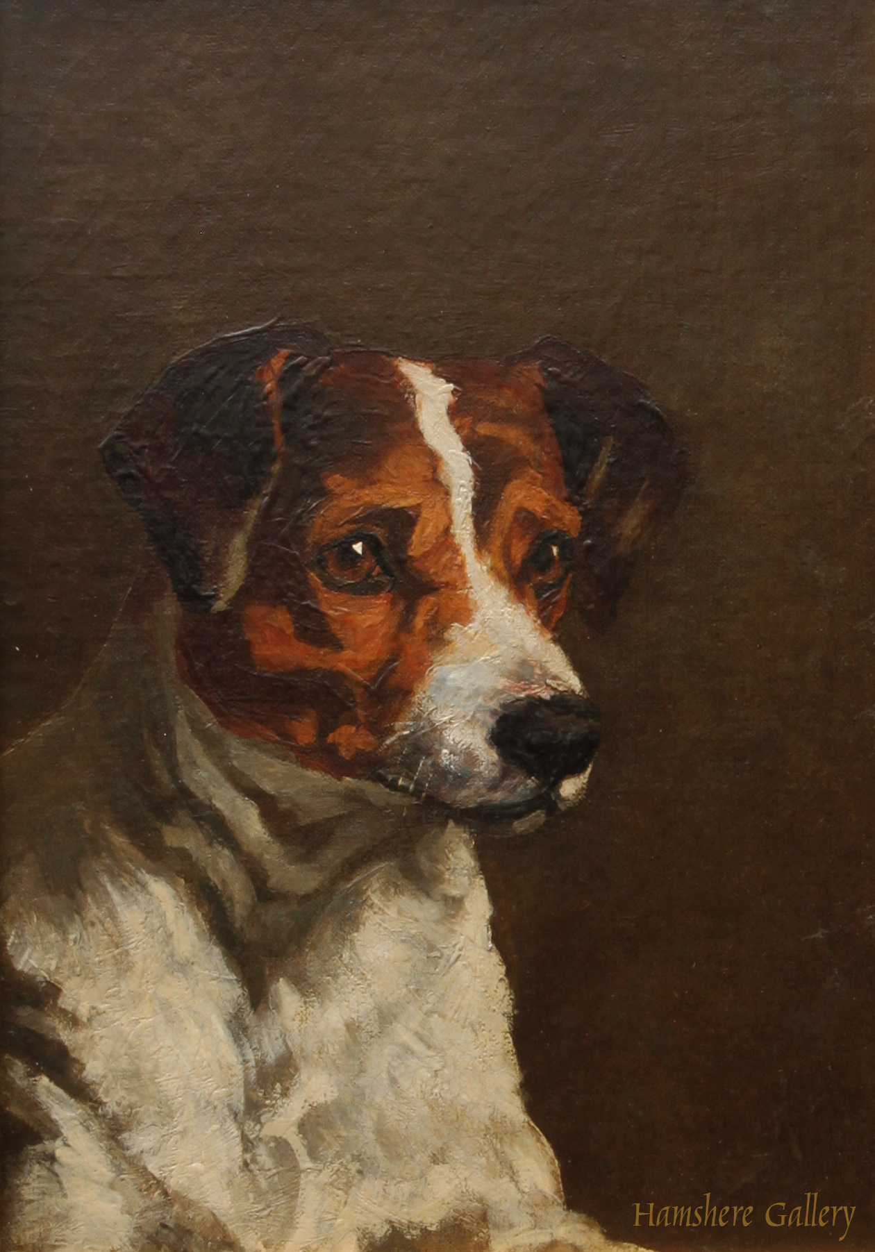 Click to see full size: Oil on canvas of a Smooth-haired Fox Terrier / Jack Russell