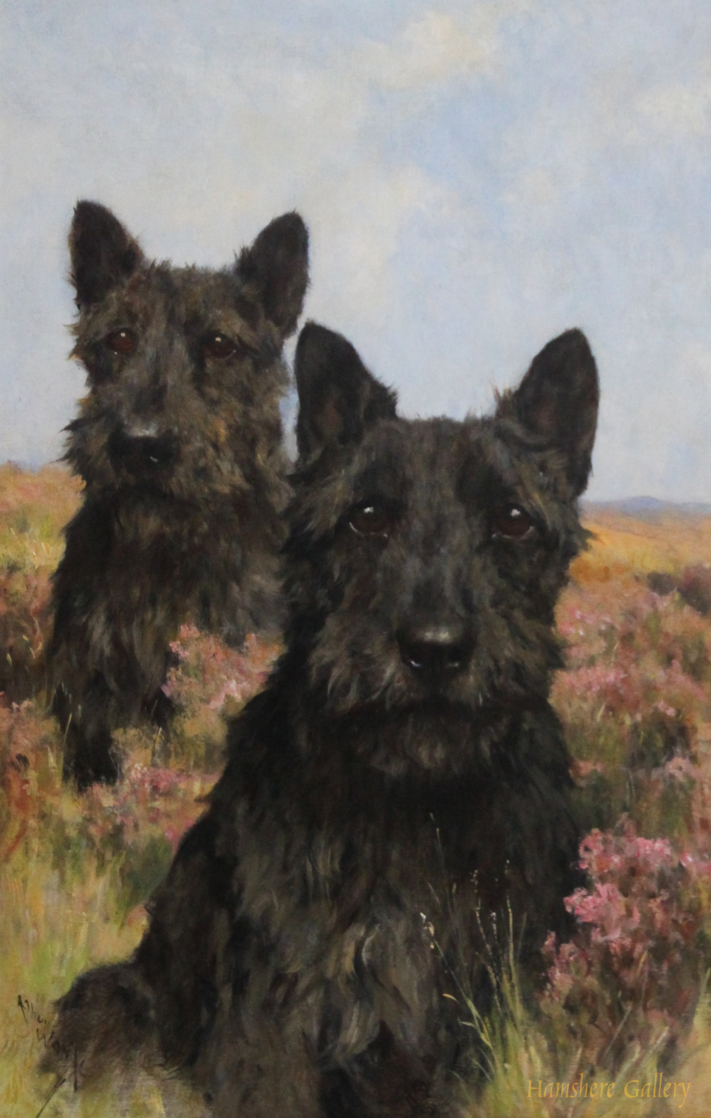 Click to see full size: Oil on canvas of a pair of Scottish Terriers by Arthur Wardle, R.I., R.B.C.