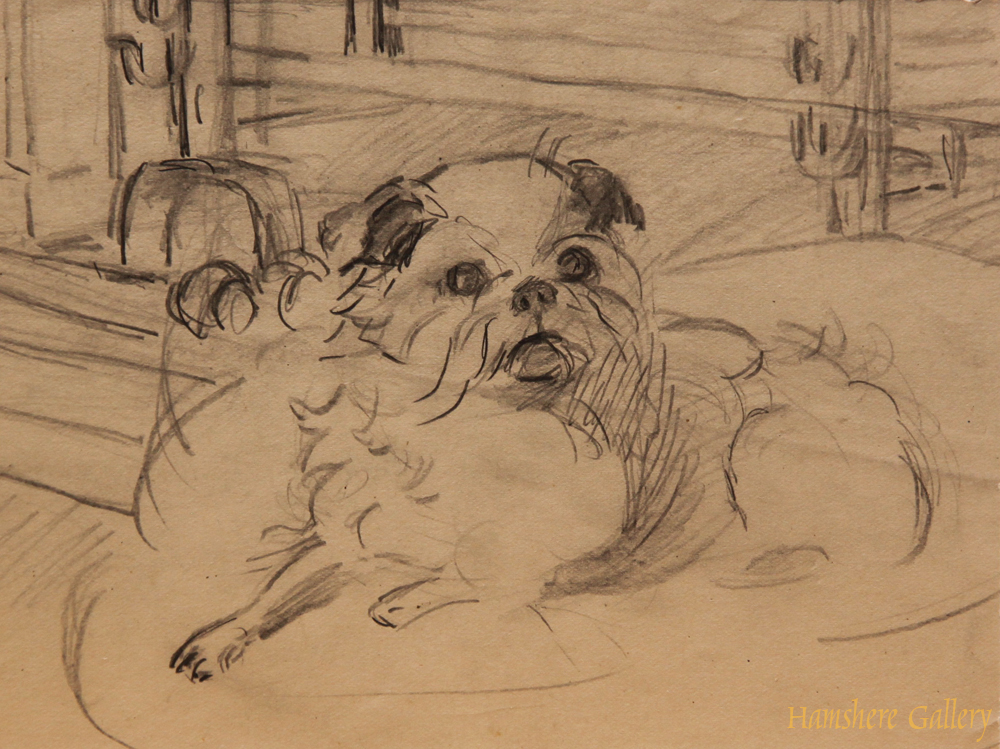 Click to see full size: Graphite Tibetan Spaniel drawing by Ethel Lavinia Tanner (b.1881)