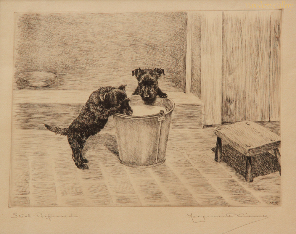 Click to see full size: Scottish Terrier dry-point etching �Steal Preferred� by Marguerite Kirmse