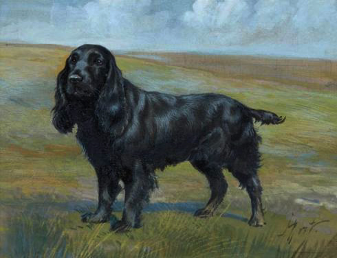 Click to see full size: Gouache of a Cocker Spaniel by Jean-Marie Rivet