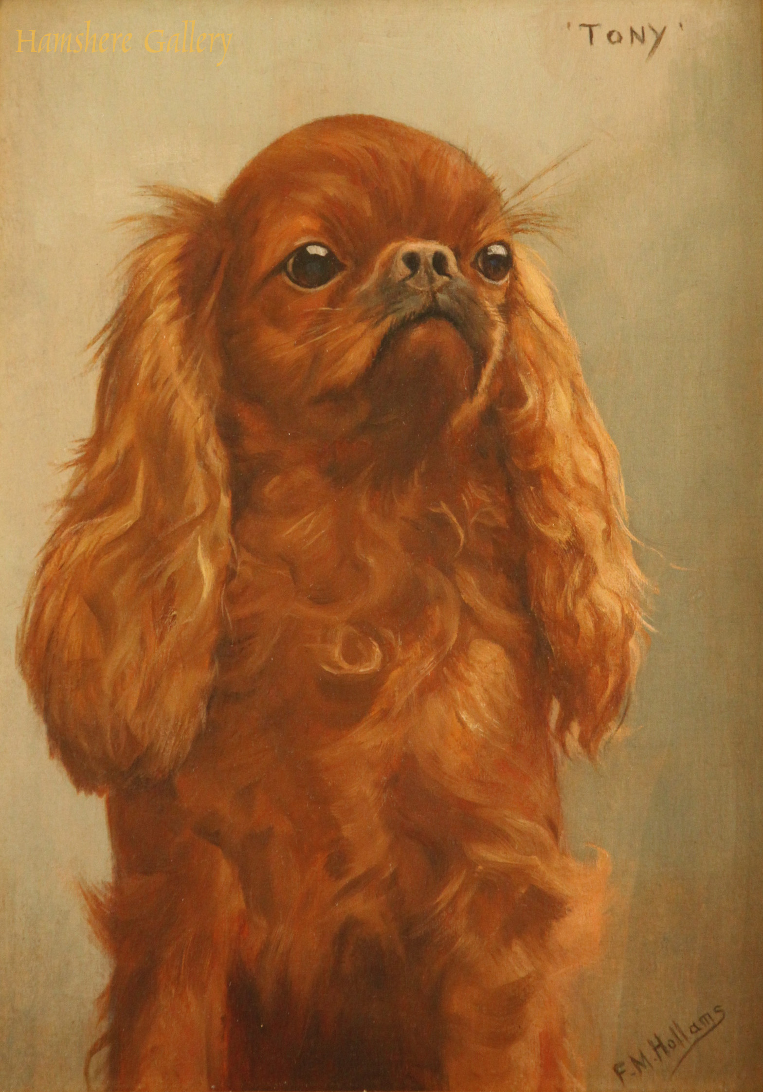 Click to see full size: King Charles Spaniel Tony Florence Mabel Hollams