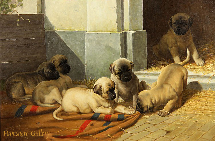 Click to see full size: Pug puppy oil by Anton Karssen