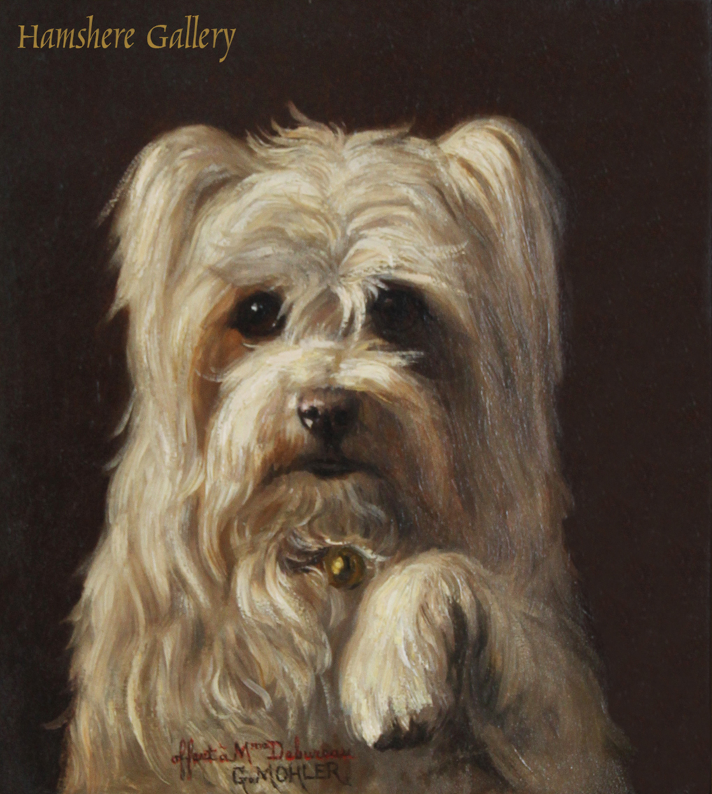 Click to see full size: An oil of a Maltese dog by Gustave Jean Louis Mohler
