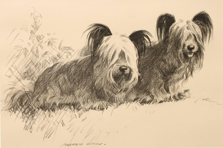 Click to see full size: Pencil and Crayon Morgan Dennis