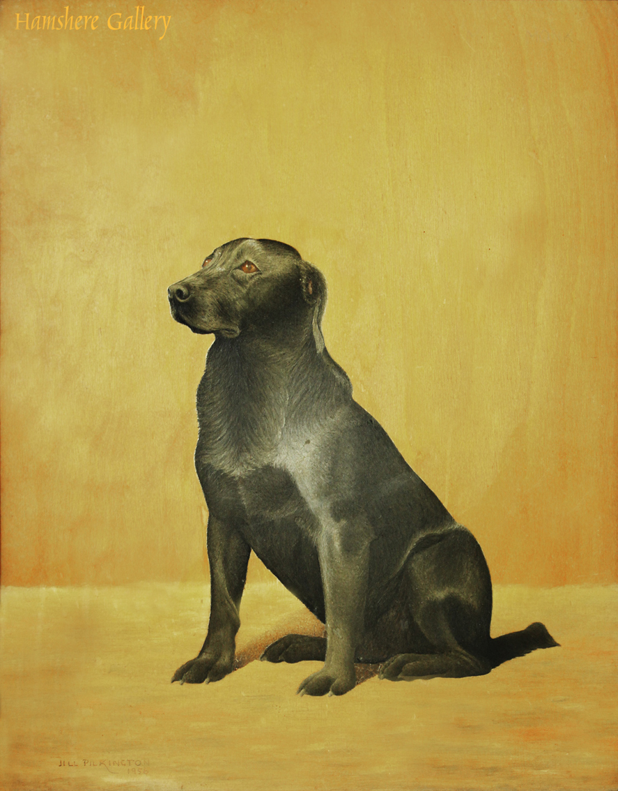 Click to see full size: Labrador Oil on panel by Jill Pilkington (English, 20th century)