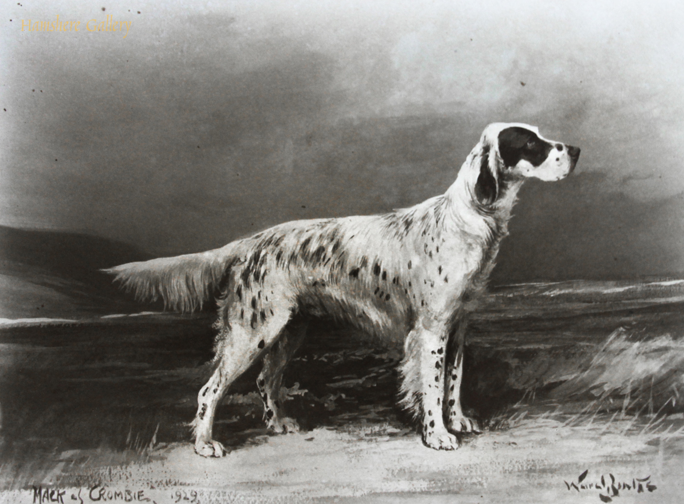 Click to see full size: Photograph of the English Setter �Mack of Crombie� after the painting by Reuben Ward Binks (English, 1880-1950)