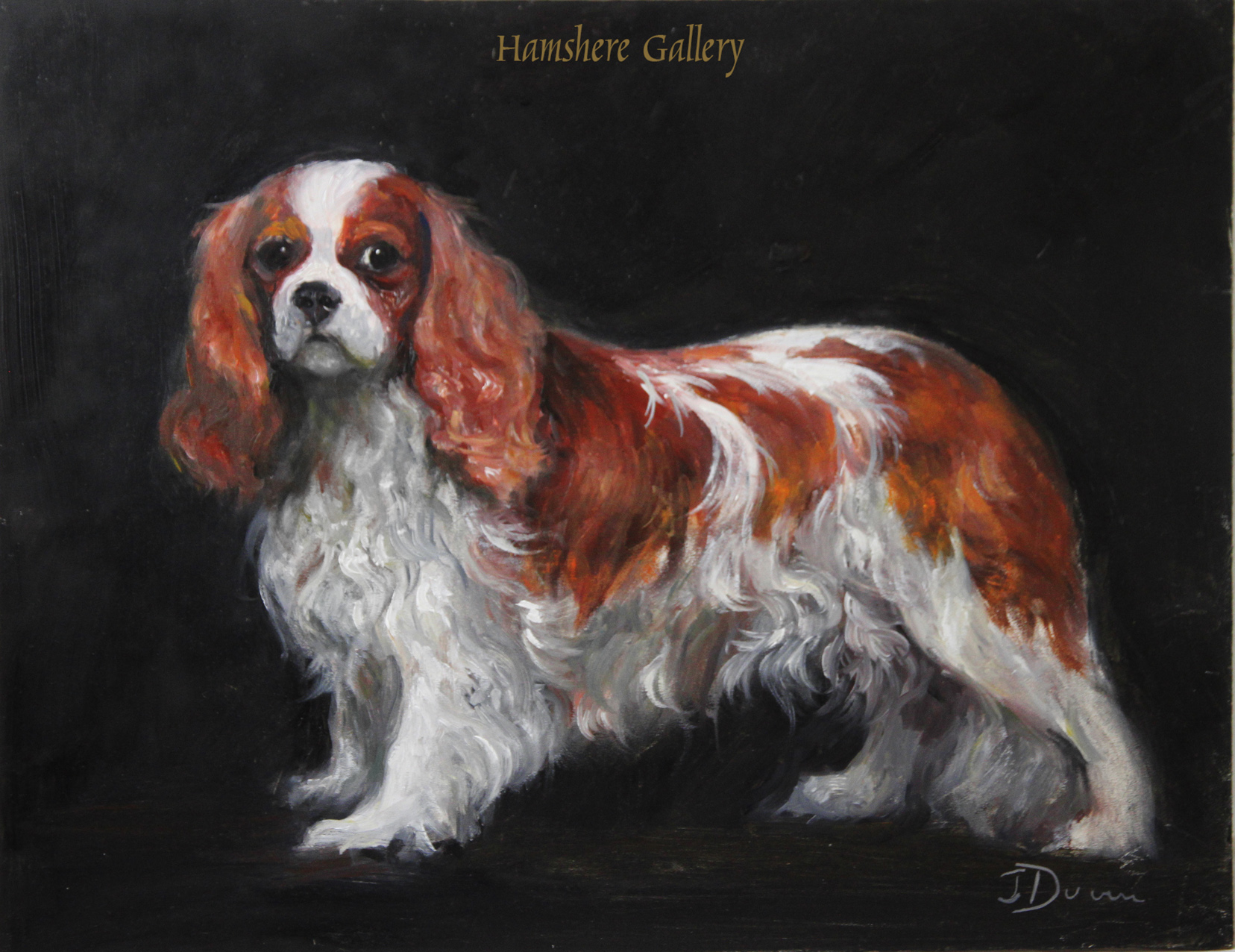 Click to see full size: An oil of a Blenheim King Charles Cavalier Spaniel By Jane Dunn (English, b.1953)