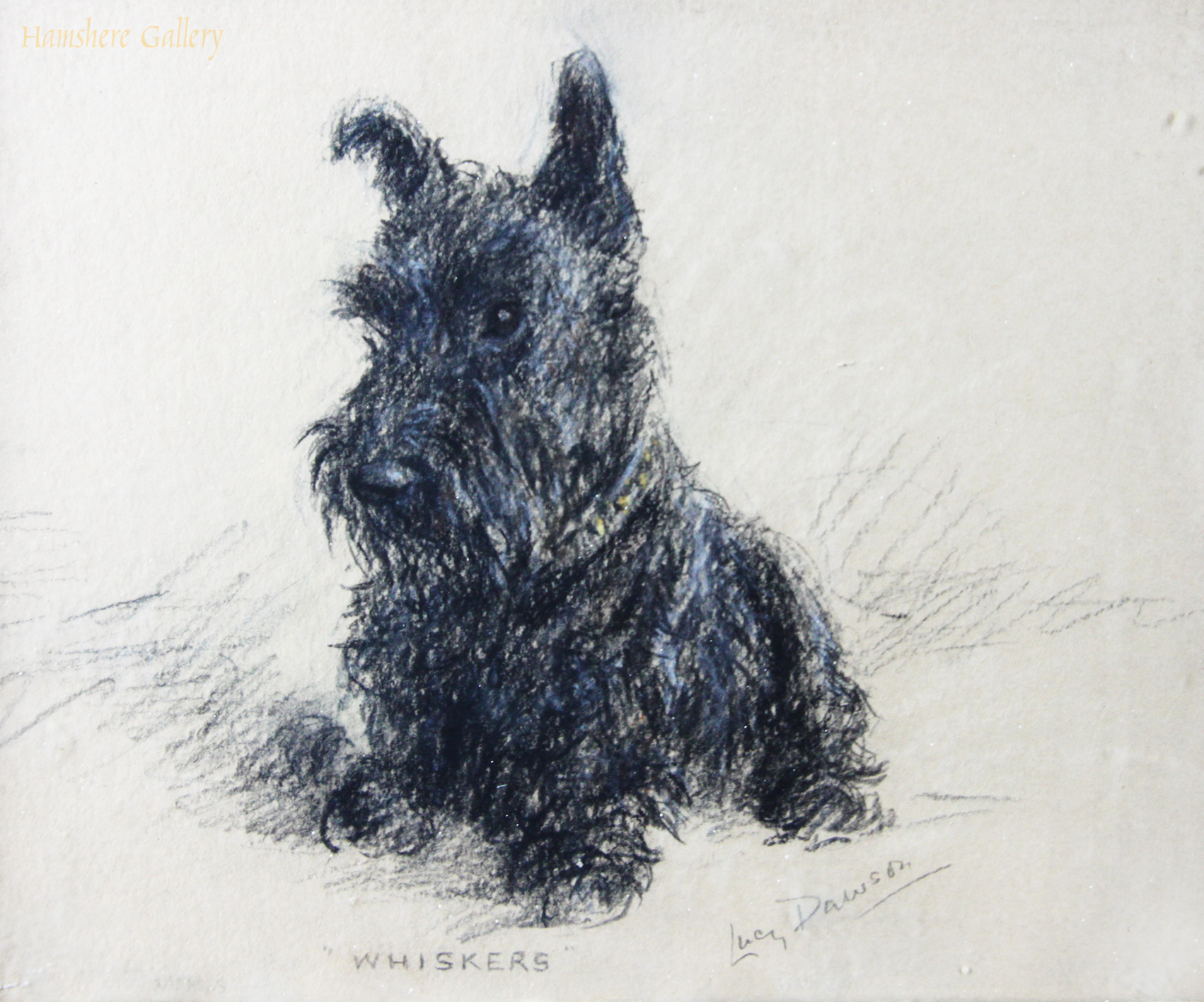 Click to see full size: Pastel of a Scottish Terrier of �Whiskers� by Lucy Dawson (English, 1877 -1958)