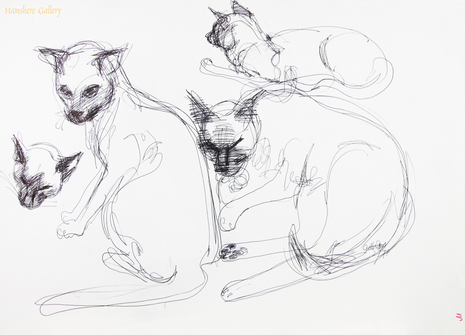 Click to see full size:    Pen and ink studies of Siamese cats by Thomas Gordon Lindsay Gutteridge (English, 1923-1907)